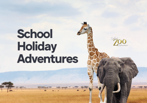 Witness the spectacle of our animatronic Safari Zoo Adventure